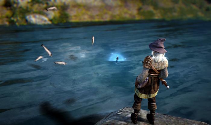 Five Top Beginner Tips to Auto Fishing in Black Desert Online   Game