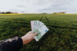 crop farmer showing money in green summer field in countryside